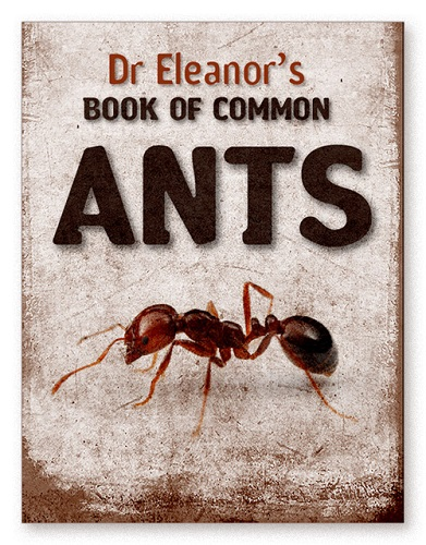 book_of_common_ants_dr_eleanor