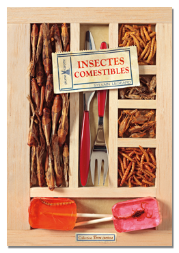 insectes_comestibles_much