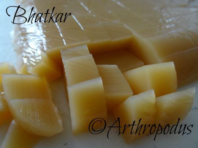 bhatkar3