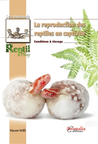 la_reproduction_des_reptiles_en_captivite_vincent_noel_blog_arthropodus