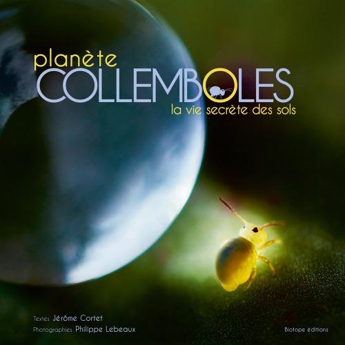planete_collemboles_la_vie_secrete_des_sols_blog_arthropodus_1