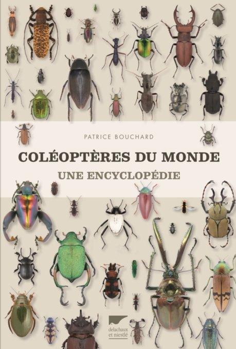 coleopteres_du_monde_une_encyclopedie_patrice_bouchard_blog_arthropodus