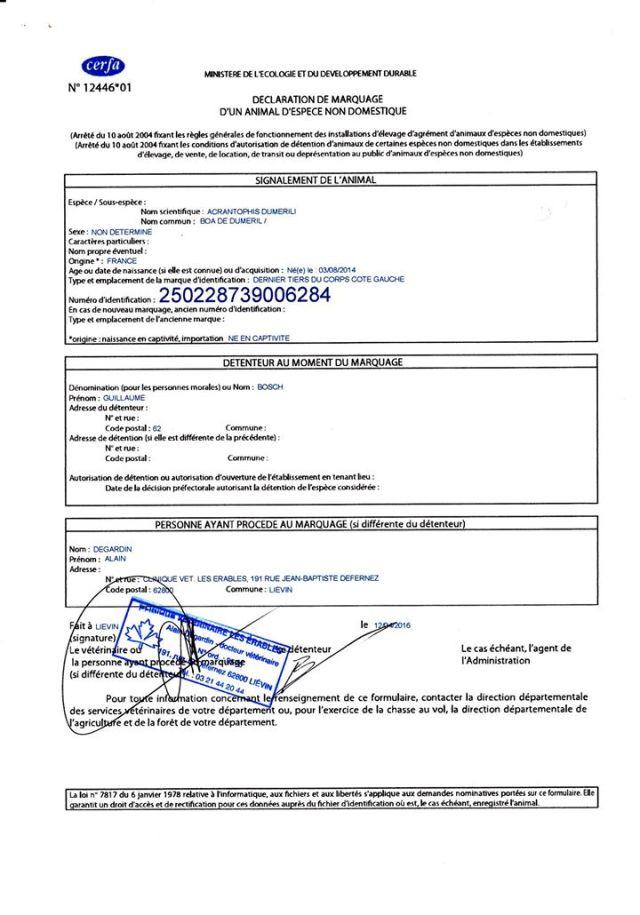 CIC_certificat_intra_communautaire_blog_arthropodus_5